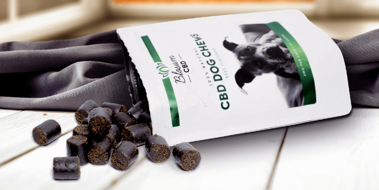best cbd dog treats reviews
