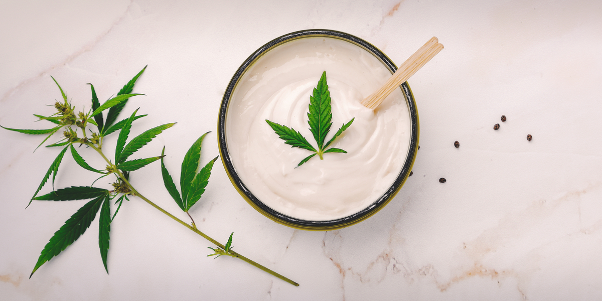 CBD salve vs cbd cream