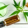 CBD Salve THC-Free