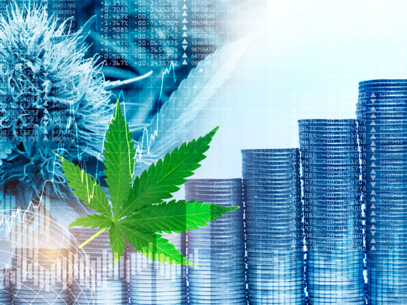 Is it Worth Investing in CBD
