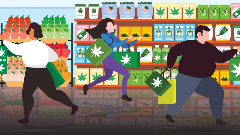 What to Look for When Shopping for CBD featured image